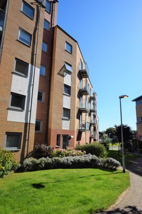2 bed flat to rent in Hawkins Road, Colchester
