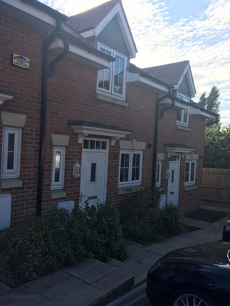Thumbnail Terraced house to rent in Sanderling Way, Forest Town, Mansfield