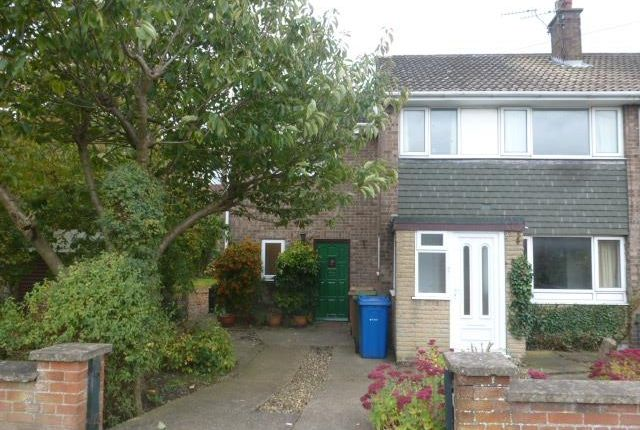 Thumbnail Property to rent in Laughton Road, Beverley