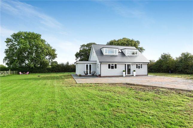 Thumbnail Equestrian property for sale in Clayhidon, Cullompton, Devon