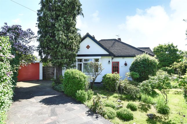 Thumbnail Detached bungalow for sale in The Glade, Shirley, Croydon