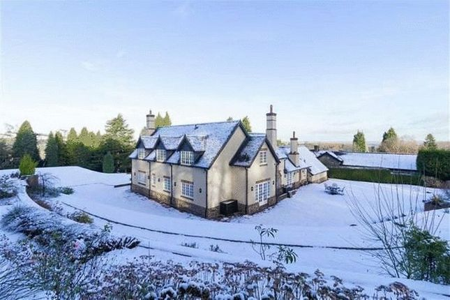 Thumbnail Detached house for sale in Bluebell Cottage, Warren Hill, Newtown Linford