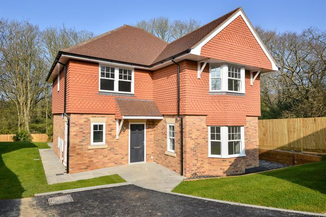 Thumbnail Detached house for sale in St. Helens Court, St. Helens Park Road, Hastings