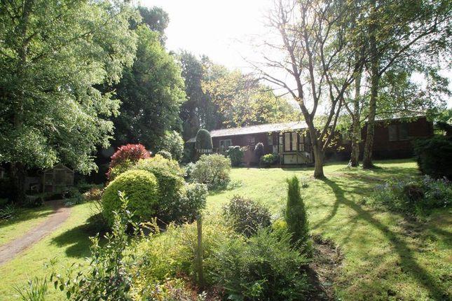 Thumbnail Property for sale in Tutsham Farm, West Farleigh, Maidstone