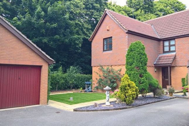 Thumbnail Detached house to rent in Broadland Drive, Thorpe End, Norwich