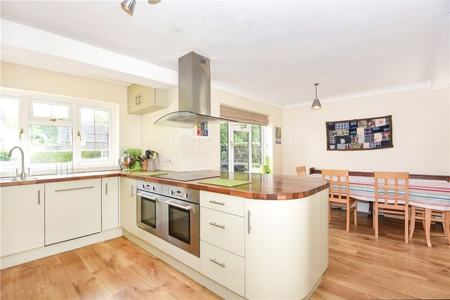 Thumbnail Detached house for sale in Hollybrook, Piddletrenthide, Dorchester