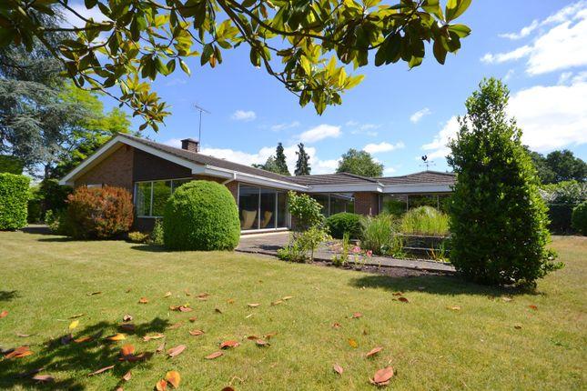 Thumbnail Detached bungalow for sale in Heathfield Road, Woking