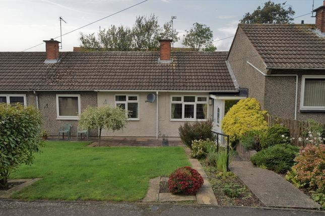 Thumbnail Terraced bungalow to rent in Fredscott Close, Thurnby Lodge, Leicester
