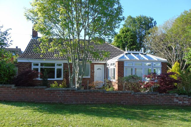 Thumbnail Bungalow for sale in Ash Grove, Morpeth