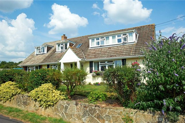 Thumbnail Detached house for sale in New Road, Broad Oak, Sturminster Newton