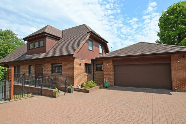 Thumbnail Detached house for sale in Frith End, Bordon