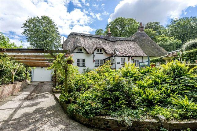 Thumbnail Property for sale in Tarrant Rushton, Blandford Forum, Dorset