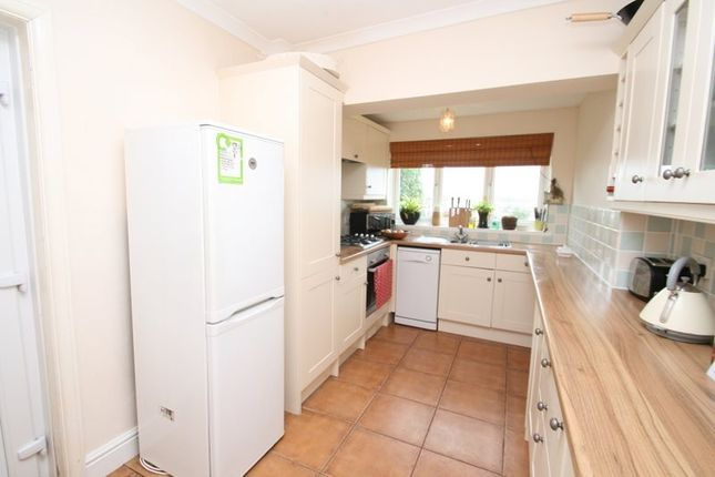 Thumbnail Semi-detached house to rent in Footlands Road, Paignton