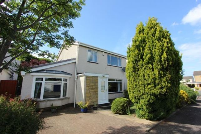 Thumbnail Detached house to rent in Broomhill Park, Dalkeith, Midlothian