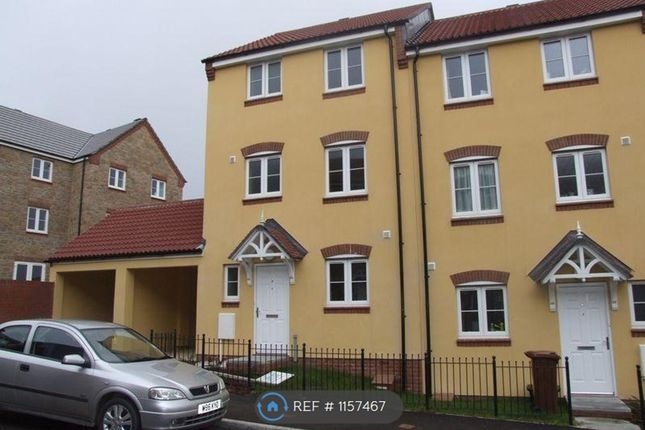 Thumbnail Semi-detached house to rent in Shambles Drive, Crediton