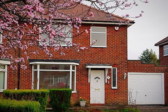 Thumbnail Semi-detached house to rent in Chester Avenue, Chorley