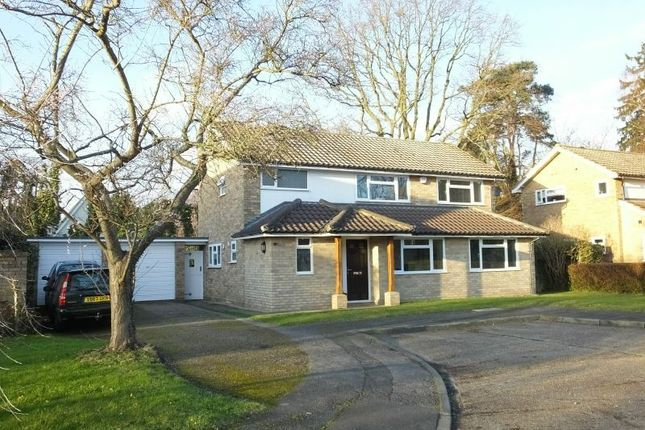 Thumbnail Detached house for sale in Birch Close, Send, Woking