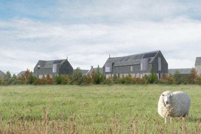 Thumbnail Land for sale in The Steadings, Maudlin Farm, Warkworth, Northumberland