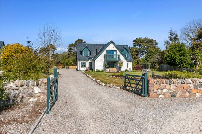 Thumbnail Property for sale in Hilton, Dornoch, Sutherland