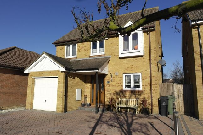 Thumbnail Detached house for sale in Drake Avenue, Mayland, Chelmsford