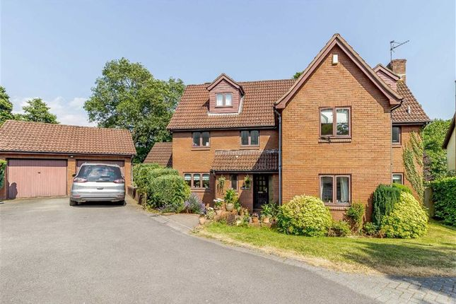 Thumbnail Detached house for sale in Shepherd Drive, Langstone, Newport