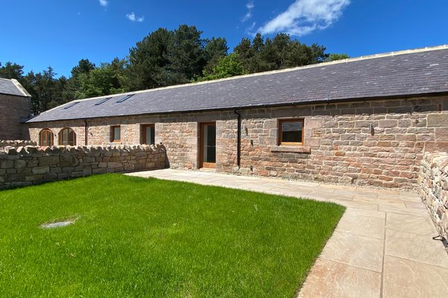 Thumbnail Cottage for sale in Chatton, Alnwick