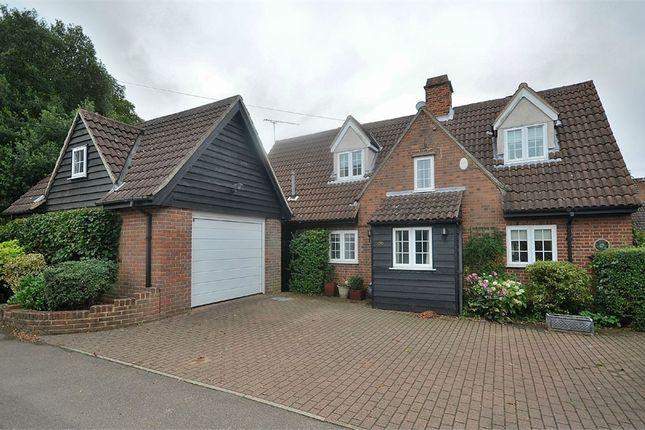 Thumbnail Detached house to rent in Felsted, Dunmow, Essex