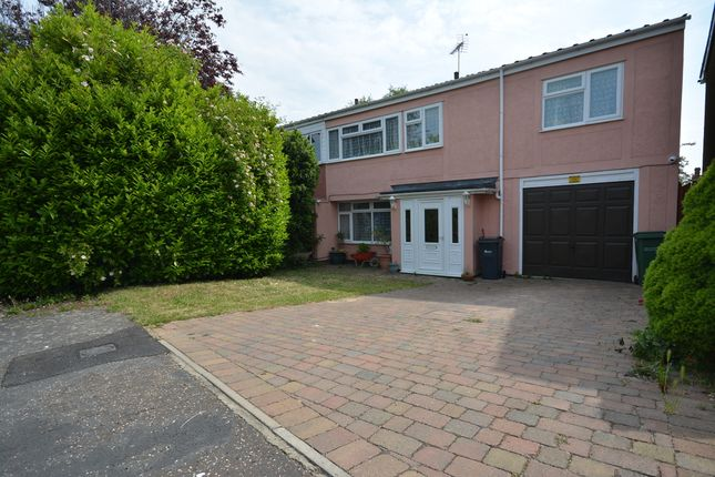 Thumbnail Semi-detached house for sale in Peartree Close, Braintree