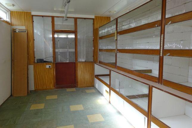 Main Aviary Workshop