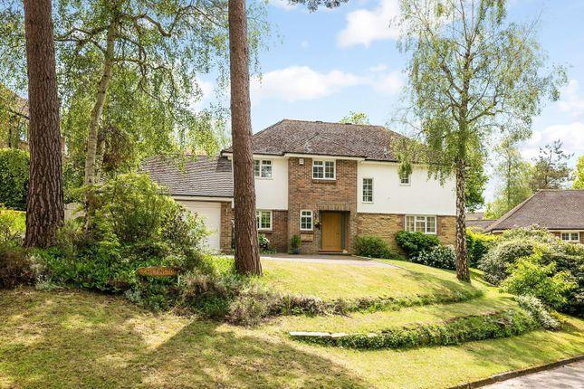 Thumbnail Detached house for sale in Azalea Close, Storrington, West Sussex