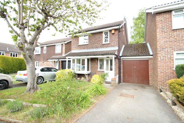 Thumbnail Link-detached house to rent in Glamis Close, Frimley, Camberley