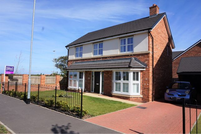 Thumbnail Detached house for sale in Hornbeam Drive, Yarm