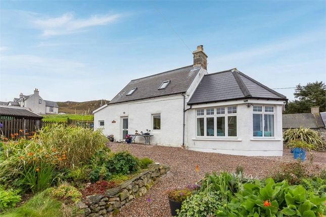 Thumbnail Detached house for sale in Brawview, Bettyhill, Thurso, Highland