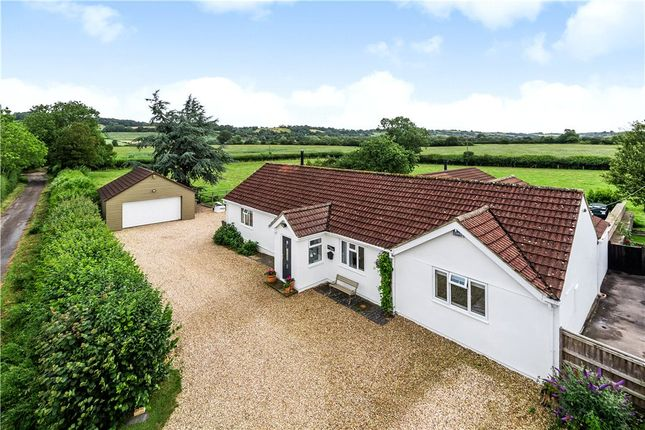 Thumbnail Bungalow for sale in Cod Lane, Barrows Hill, East Chinnock, Yeovil, Somerset