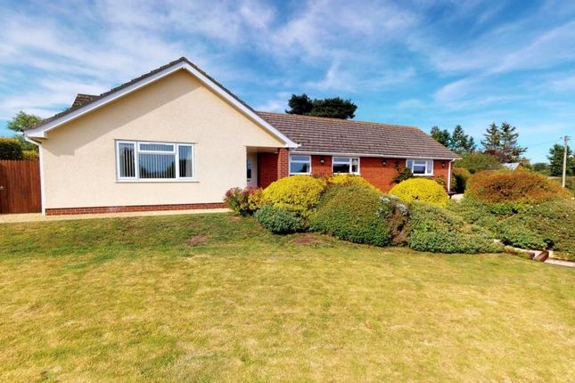 Thumbnail Detached bungalow for sale in Sandy Lane, Broadclyst, Exeter, Devon
