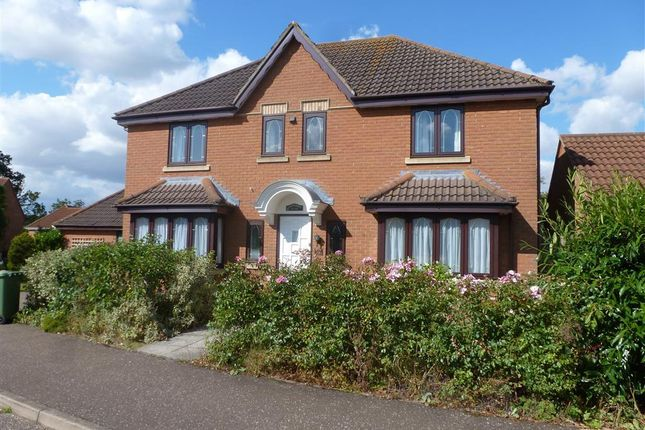 Thumbnail Property to rent in Stilwell Drive, Dereham, Norfolk