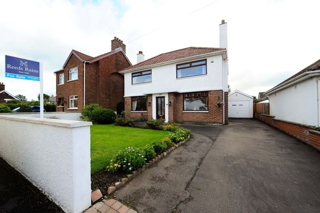Thumbnail Detached house for sale in Houston Drive, Belfast