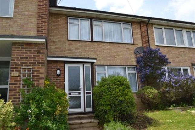 Thumbnail Property to rent in Sadlers Way, Hertford