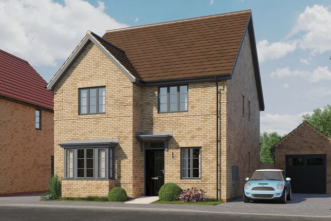 Thumbnail Detached house for sale in Potton Road, Biggleswade