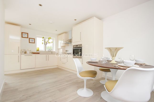 Thumbnail Detached house for sale in Mannock Drive, Manston, Ramsgate