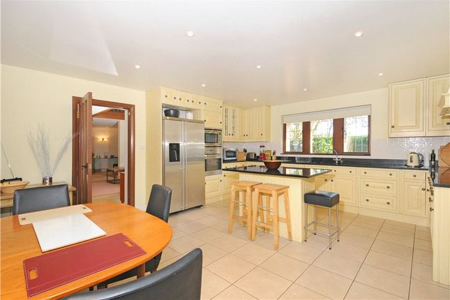 Detached house to rent in Winkfield Road, Ascot, Berkshire