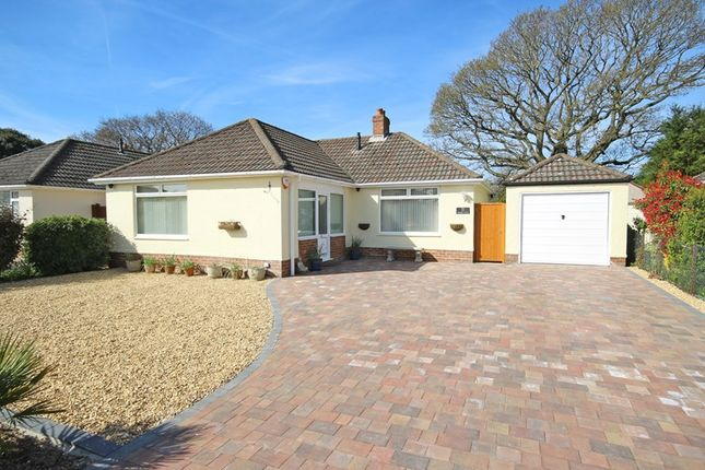 Thumbnail Detached bungalow for sale in Ashmore Avenue, Barton On Sea, New Milton