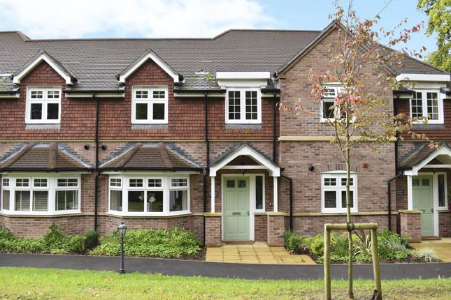 Thumbnail Terraced house to rent in St Ives Place, Horten Road, Ringwood