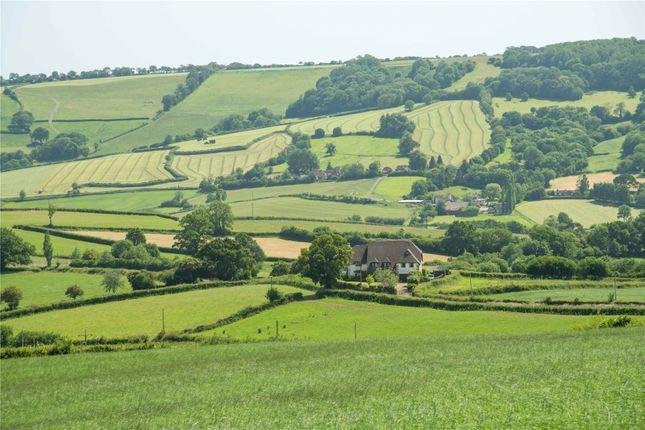 Rural Setting of Northleigh, Colyton, Devon EX24
