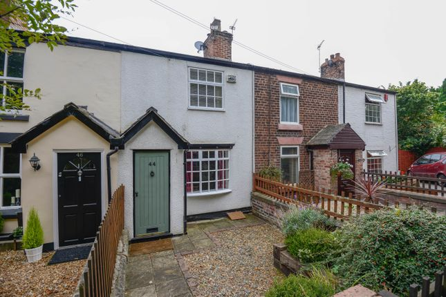 Thumbnail Terraced house to rent in Rushgreen Road, Lymm