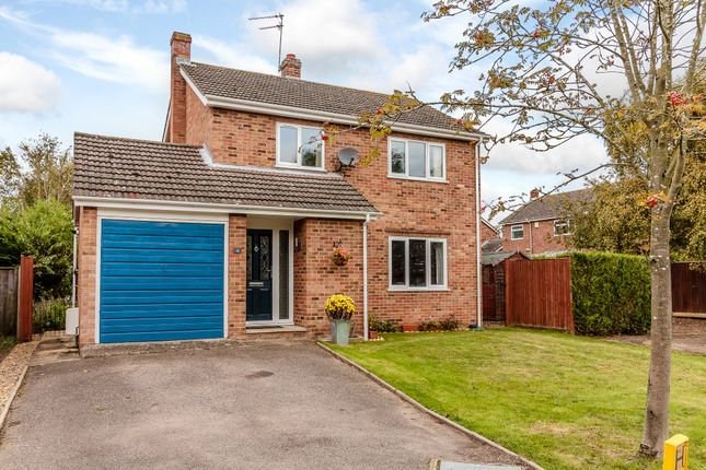 Thumbnail Detached house for sale in Joy Avenue, Norwich