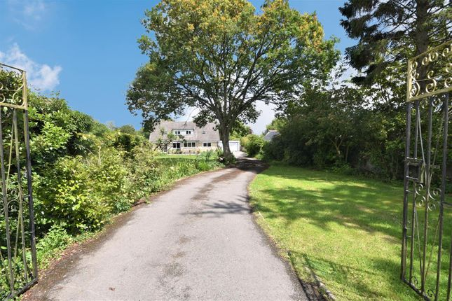 Thumbnail Detached house for sale in Cann Common, Shaftesbury