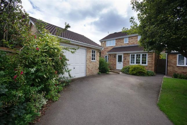 Thumbnail Detached house for sale in Sedgefield Gardens, Downend