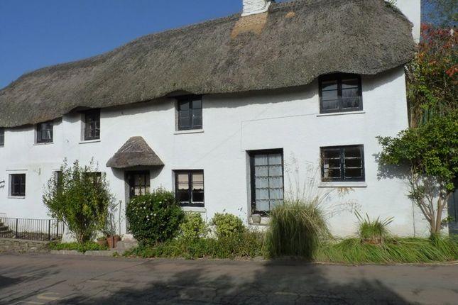 Thumbnail 4 bed cottage to rent in Chillington, Kingsbridge