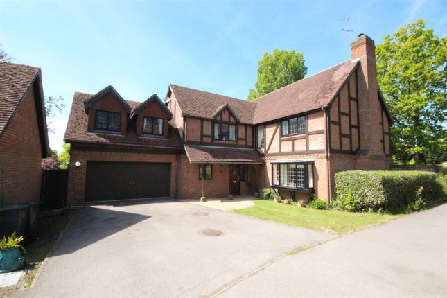 Detached house for sale in Durley Avenue, Cowplain, Waterlooville